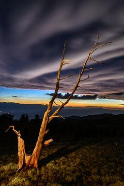 DL_20160701_DSC0801-Eastern-Sierra-White-Mountains