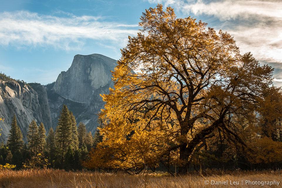 Yosemite_DL_20121103_DSC0968_v1.jpg